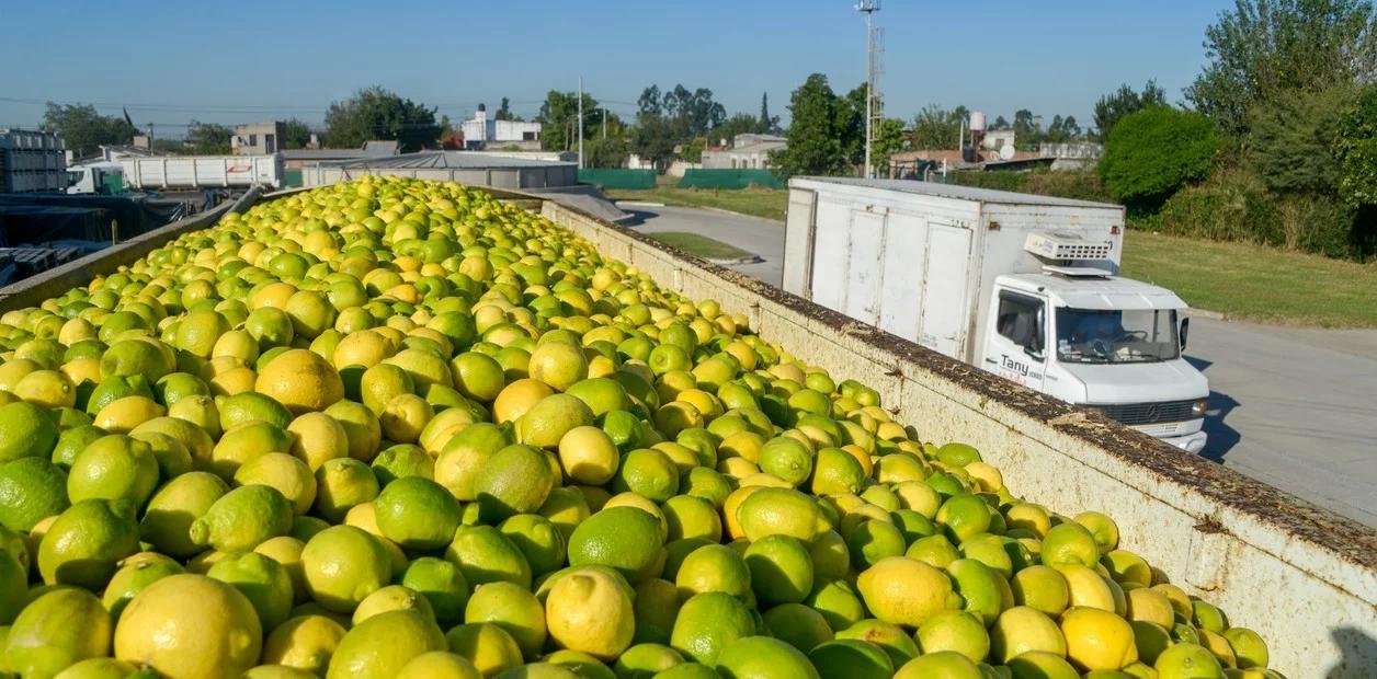 Se le abren las puertas al limón argentino en India