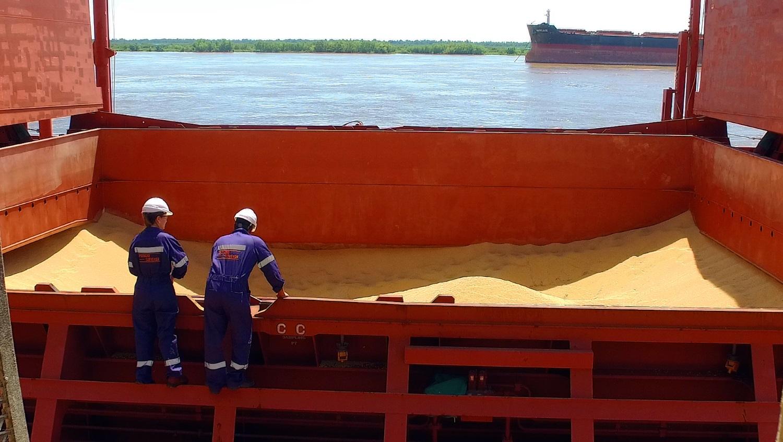 Inspecciones de aptitud de bodegas y tanques de buques
